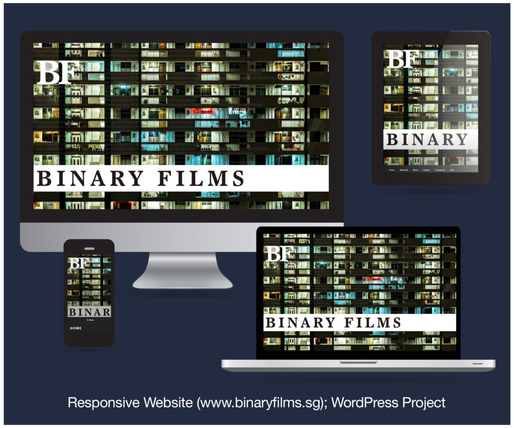 Responsive Website designed and developed for BINARY FILMS