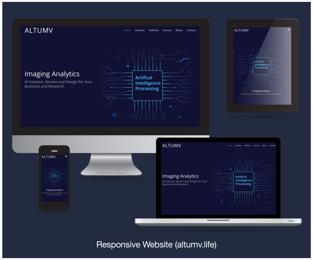 Animation and illustration slide (×5 illustrations) for Responsive Website
